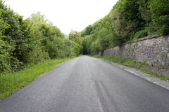 Asphalted road to the woods. Freshly asphalted road to the green woods Royalty Free Stock Photo