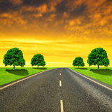 Asphalted road with trees. In the sunset Royalty Free Stock Photo