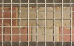 Asphaltieren Sie Gitter auf den Schritten des Portals, Nahaufnahme lizenzfreie stockfotos