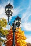 Asphaltieren Sie Laterne auf dem Hintergrund des Herbstwaldes Stockbild