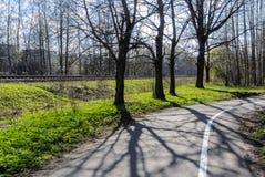 Asphaltierte Fahrradhinterstraße nahe bei der Eisenbahn von Riga zu Jurma Stockbild