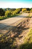 Asphaltierte Landstraße mit Taktstock- und Drahtzaun, Mahia-Halbinsel, Nordinsel, Neuseeland Lizenzfreie Stockfotografie