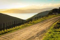 Asphaltierte Landstraße mit Taktstock- und Drahtzaun, Mahia-Halbinsel, Nordinsel, Neuseeland Stockfotos