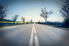 Asphaltlandstraße mit Bäumen und schönem Himmel Lizenzfreies Stockfoto