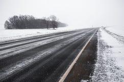 Asphaltstraße, die ein schneebedecktes Feld durchläuft stockfotografie
