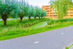 Asphaltstraße nahe bei einem See mit Bäumen Stockfotos