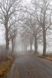 Asphaltstraße in einem großen Nebel Niedrige Sicht auf einer verkehrsreichen Straße in Mitteleuropa stockbild