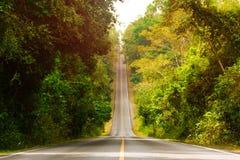 Asphaltstraße, die auf dem Himmel durch tropischen Regenwald steigt Lizenzfreies Stockfoto
