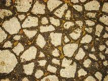 Asphault humide criqué Photographie stock