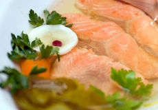 Aspic from salmon Royalty Free Stock Photos