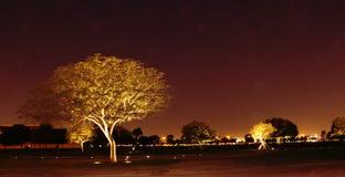 Aspira il giardino Qatar Immagine Stock