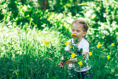Aspiración de la niña las flores en bosque Imagenes de archivo
