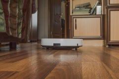 Aspirador robótico en el piso laminado en un interior moderno del apartamento, tecnología de limpieza elegante en la limpieza cas imágenes de archivo libres de regalías