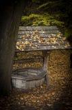 Aspiration-bien en bois dans le jour d'automne avec des feuilles sur le toit photographie stock libre de droits