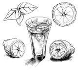Aspiration de main de vintage de citron Image libre de droits