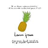 Aspiration Logo Color Vector de main d'ananas Photographie stock