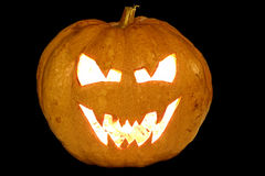 ASPpumpkin2.jpg. Halloween pumpkin Royalty Free Stock Photography