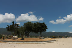 Asprovalta resort , trees and blue sky Stock Images