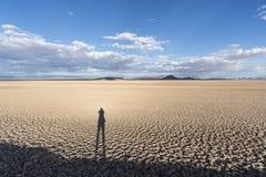 Assèche soda nationale de conserve de Mojave avec l'ombre photos libres de droits