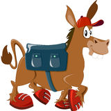 Ass. Modern donkey with a bag and sneakers Stock Photo