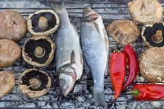Assado baixo europeu do labrax de Dicentrarchus dos peixes em carvões com cogumelos e pimentas fotografia de stock royalty free