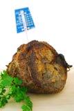 Assado de carne Fotos de Stock Royalty Free