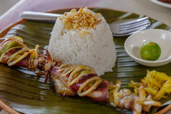 Assado do calamar com arroz Imagens de Stock