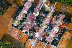 Assado do no espeto no carvão de pedra do forno dos espetos cru Foto de Stock