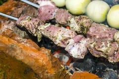 Assado do no espeto no carvão de pedra do forno dos espetos cru Fotos de Stock Royalty Free