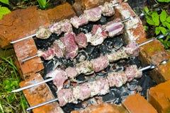 Assado do no espeto no carvão de pedra do forno dos espetos cru Fotografia de Stock Royalty Free