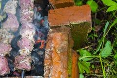 Assado do no espeto no carvão de pedra do forno dos espetos cru Imagem de Stock Royalty Free