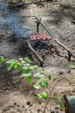 Assado na fogueira na floresta Imagens de Stock