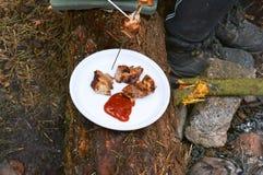 Assado na natureza, carne do cozinheiro em carvões em um fogo em espetos, para ter um resto na natureza fotos de stock royalty free