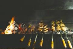 Assado no ar livre No espeto da carne de porco em carvões imagem de stock royalty free