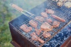 Assado no forestshashlik na natureza Processo de cozinhar a carne no assado, close up Imagens de Stock