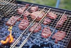 Assado no forestshashlik na natureza Processo de cozinhar a carne no assado, close up Imagem de Stock Royalty Free