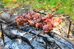 Assado que cozinha a carne em um fogo fotografia de stock