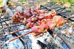 Assado que cozinha a carne em um fogo imagem de stock royalty free