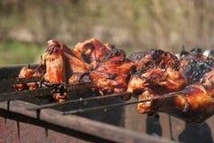 Assado, shashlik, no espeto da carne Foto de Stock