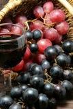 Assaggio dell'uva e della bottiglia di vino rosso Immagini Stock