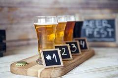 Assaggio della birra Fotografia Stock