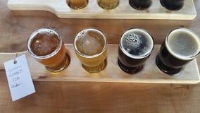 Assaggio della birra Immagine Stock