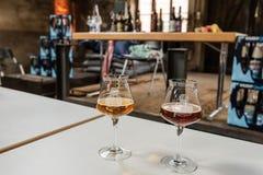Assaggio della birra del mestiere Fotografie Stock Libere da Diritti