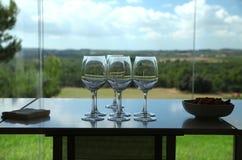 Assaggio di vino Fotografia Stock Libera da Diritti