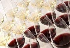 Assaggio di vino Fotografia Stock