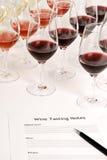 Assaggio di vino Fotografie Stock Libere da Diritti