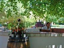 Assaggio di vino sull'azienda agricola scenary del vino, Sudafrica Immagini Stock