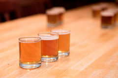 Assaggio di volo della birra ad una fabbrica di birra Immagine Stock Libera da Diritti