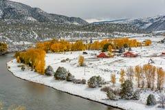 Assaisonnez la neige et les arbres changeants et premiers d'automne Images libres de droits