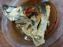 Assam a cuit la tête à la vapeur de poissons images libres de droits